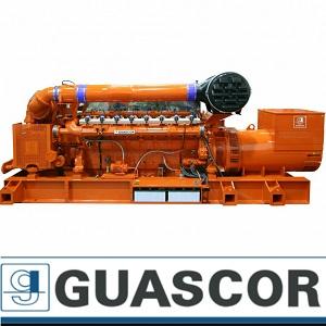 ژنراتور گازی گاسکور guascor شرکت رایا مولد